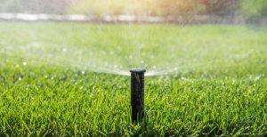 Garden Sprinkler Watering Theme