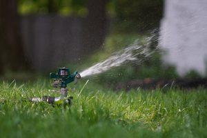 sprinkler in grass